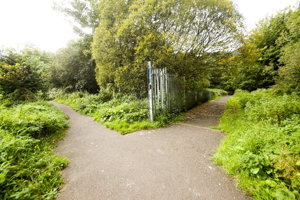 Forth Meadow Community Greenway in Belfast.