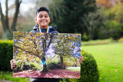 Winners of Belfast Parks Photographic Competition announced today